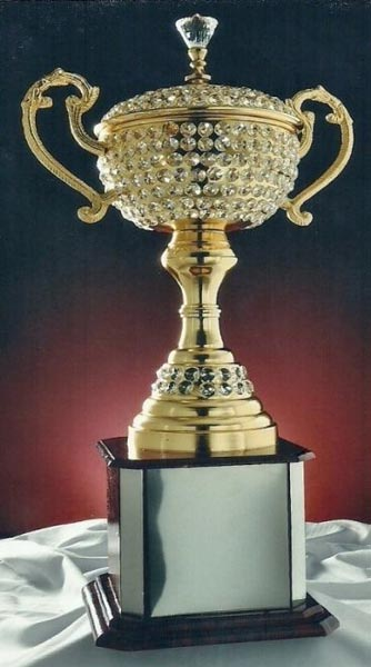 Diamond Cup Trophies Manufacturer Supplier In Moradabad India