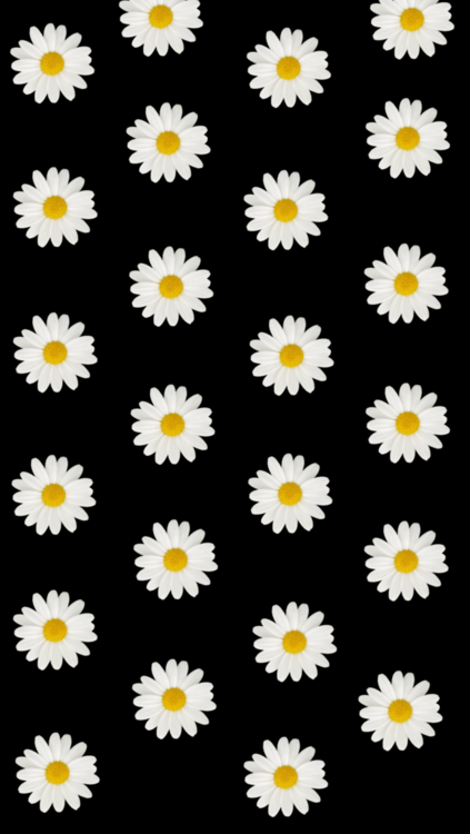 Yellow Spring Flower Transparent