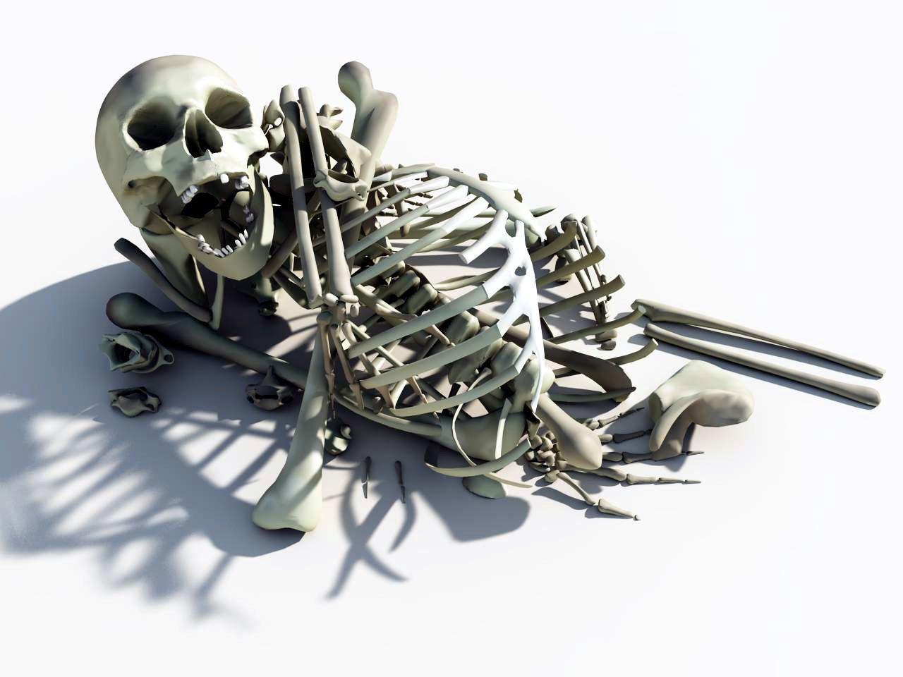 pile of bones - HD1280×960