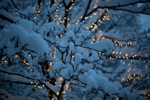 i-love-WINTER | Tumblr
