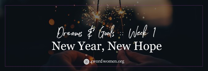 New Year  New Hope   Set Yourself Up for Realistic Success   4word new year new hope