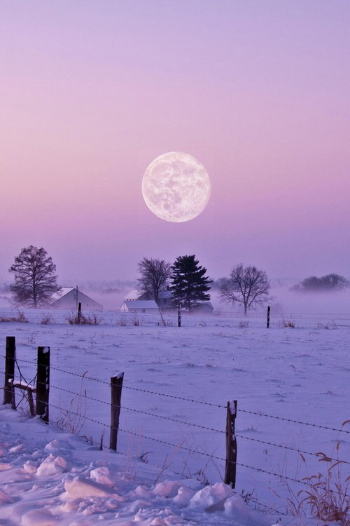 amazing winter wallpaper | Tumblr