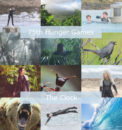 Arena 75th Hunger Games