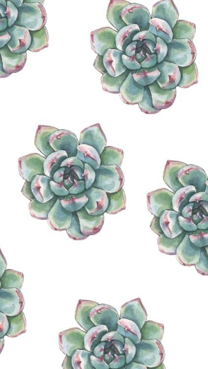 Wallpapers Laptop Cactus Tumblr