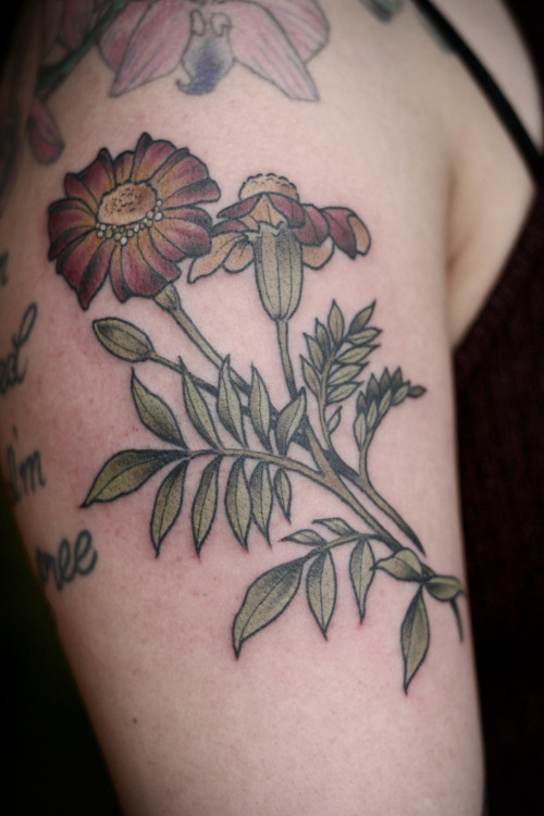 Sunflower Tattoo Tumblr