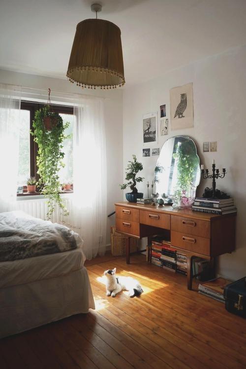Apartment Decorating Ideas Tumblr