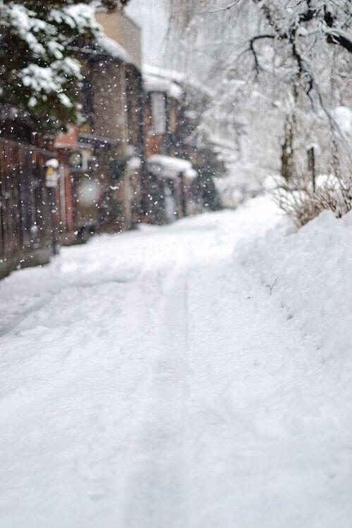 winter blog on Tumblr