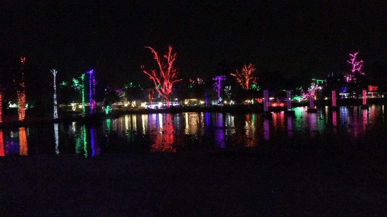 Fresno Zoo Lights 2017