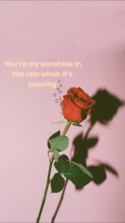 Easy Love Song Lyrics
