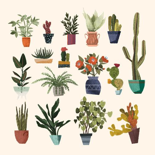 Ikea Plant Shelf