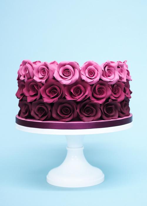 Spi Love You Rose