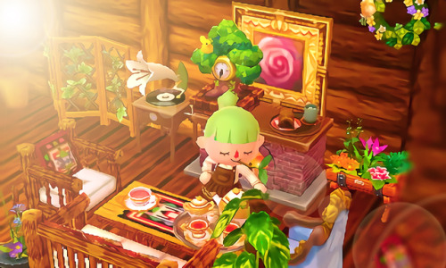 Acnl Interior Design Ideas