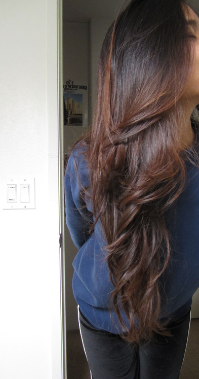 Ombre Hair Light Brown