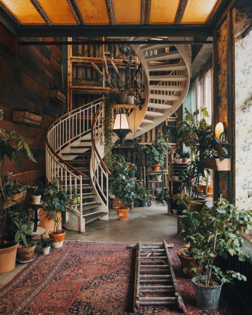 Apartment Decorating Tips Pinterest