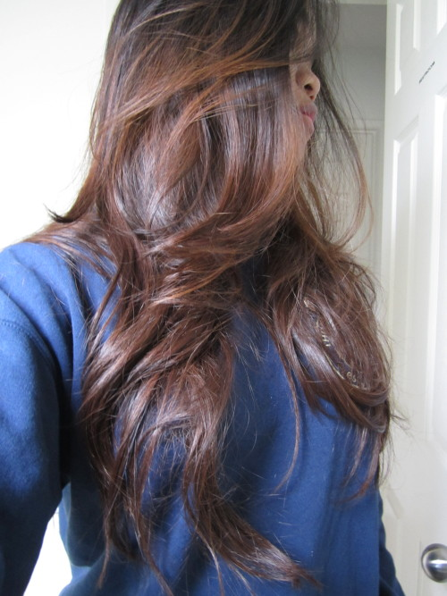 Brown Hair Light Highlights