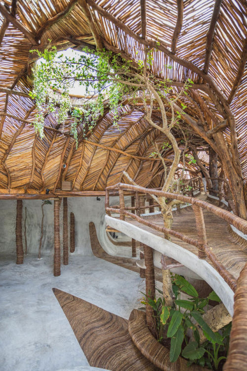 Anna Santiago Interior Design