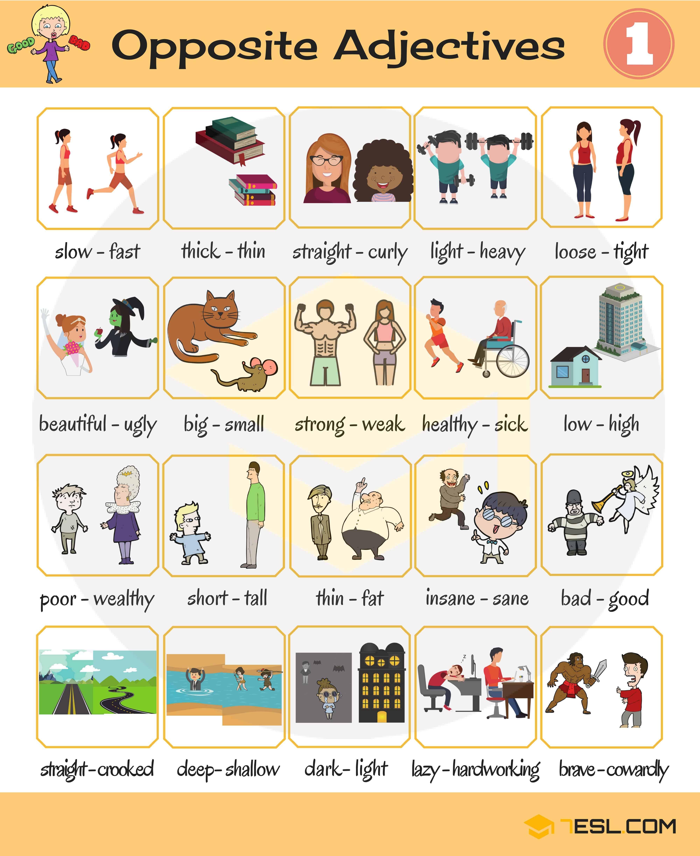 List Opposite Words English