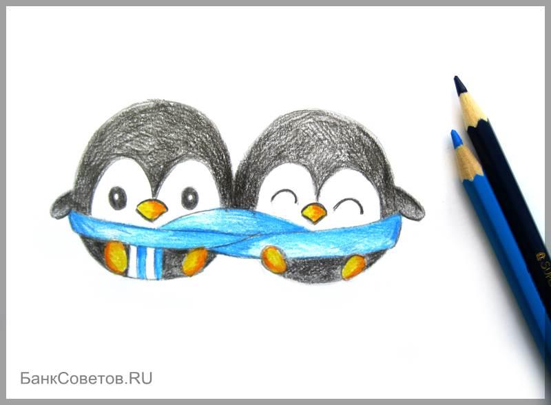 चरण №13: पेंगुइन पेंसिल कैसे आकर्षित करें