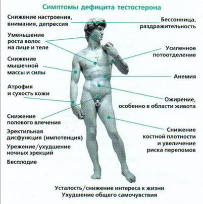 Testosteronin puutosoireet
