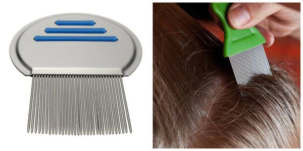 Comb with small teeth to remove lice and nd