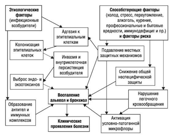 Mekanisme Pengembangan Pneumonia