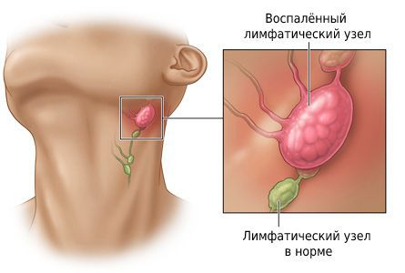 "5. ""Odontología quirúrgica ambulatoria"" (Bezrukov V.),"