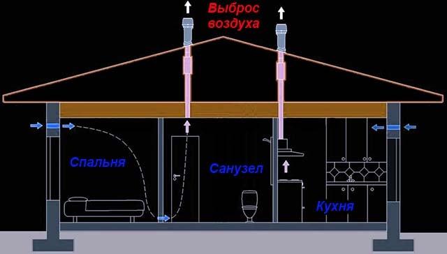 Cómo organizar un extracto natural del inodoro.