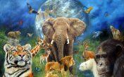 صداهای حیوانات برای جوانترین کودکان