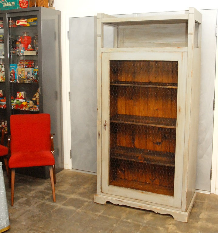 Tall Cabinet With Wire Mesh In Door At 1stdibs