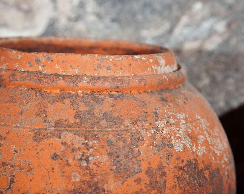 Terracotta Pot Lid