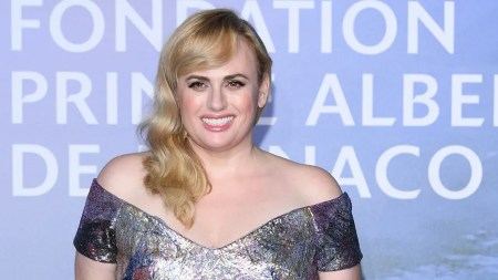 Rebel Wilson Reveals She's Only 6 Pounds Away From Her Goal Weight, Dubs  Herself 'Fit Amy' | Fox News