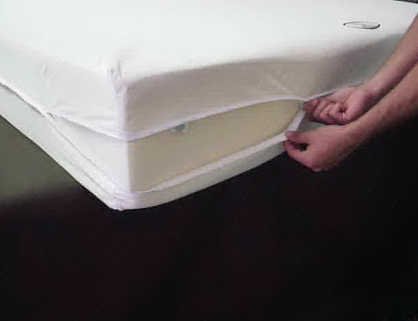 Bed Bug Mattress Cover Kmart