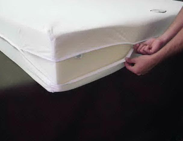 Bed Bug Mattress Cover Kmart