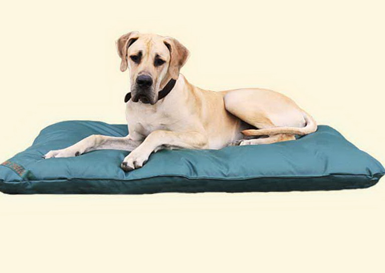 Cheap Dog Beds Extra Large