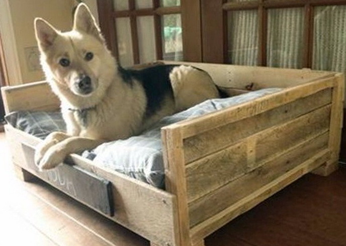 Chew Proof Dog Bed For Crate