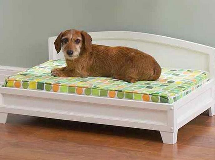 Diy Elevated Dog Bed