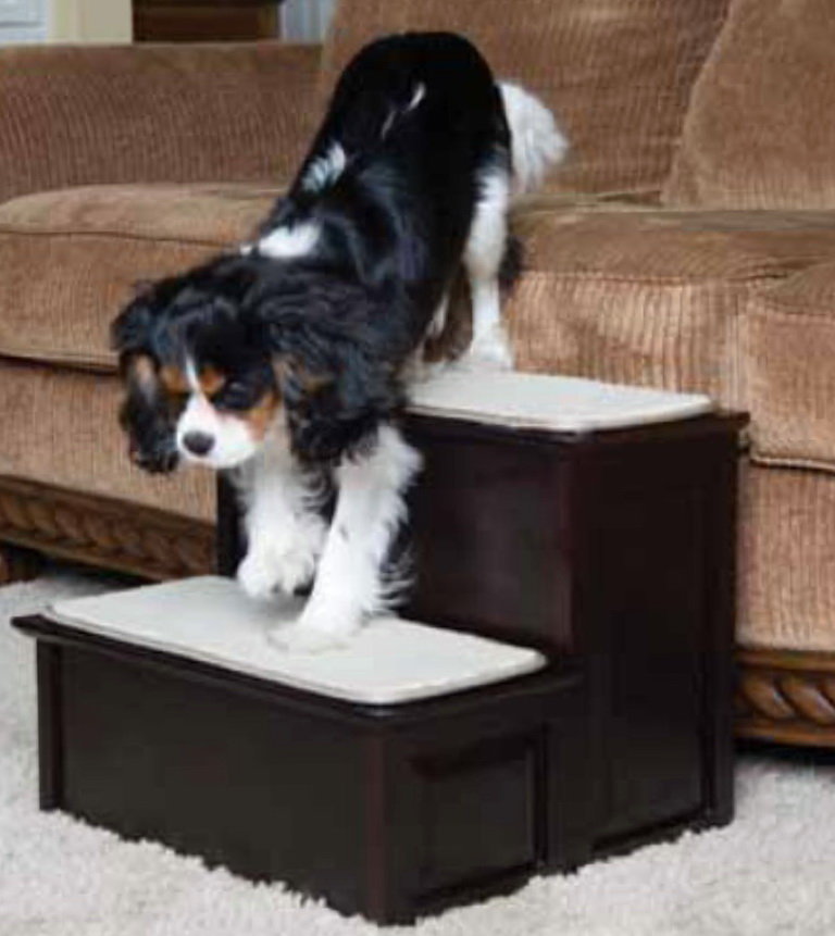 Dog Stairs For Bed Amazon