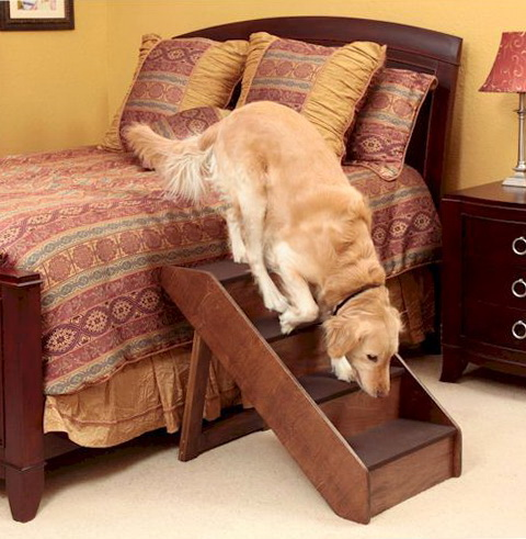 Dog Stairs For Bed Large Dogs