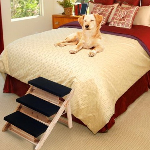 Dog Stairs For Bed Petsmart