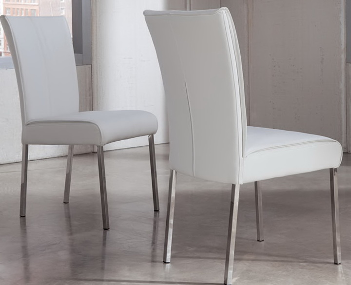 Modern Dining Chairs White