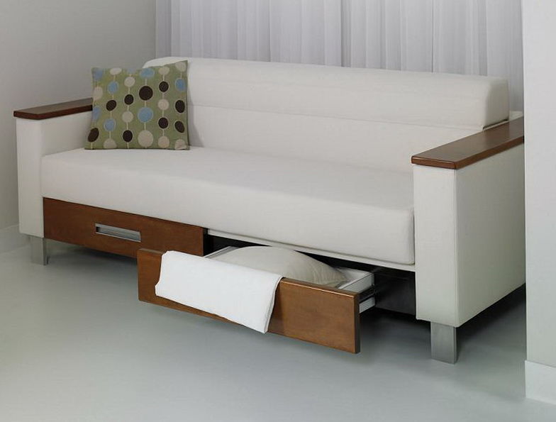 Best Sleeper Sofa 2011