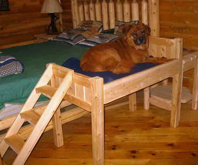 Elevated Dog Bed With Stairs