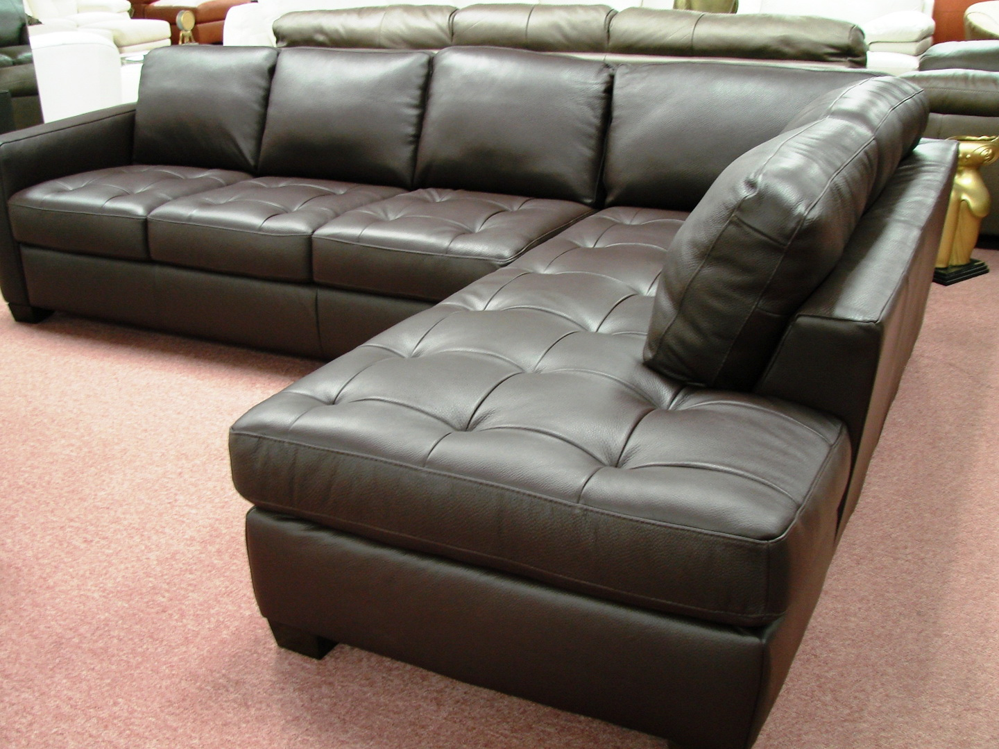 Natuzzi Leather Sofa Reviews