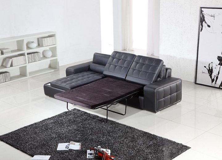 Pull Out Sofa Bed Sectional