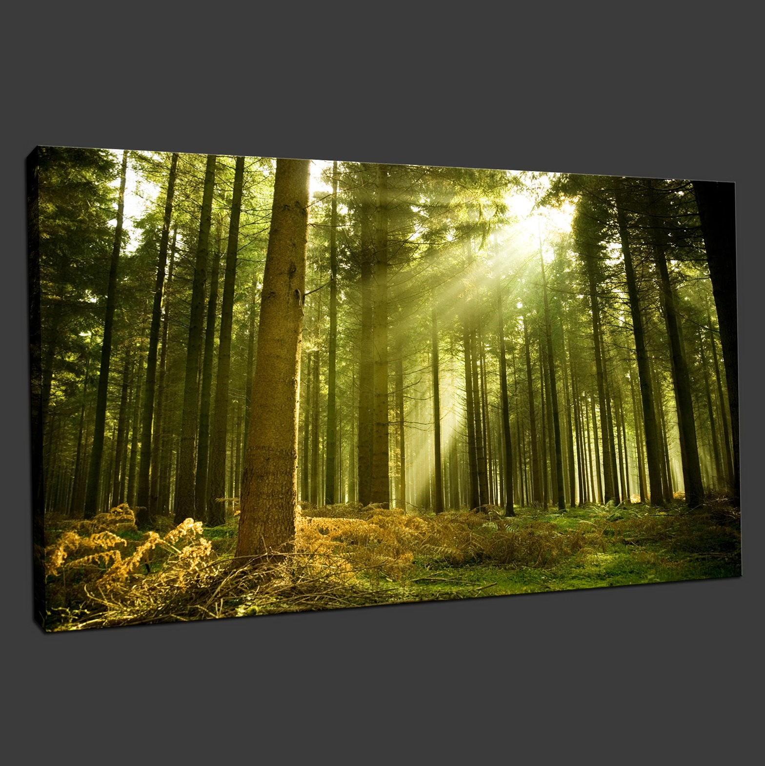 Canvas Wall Art Uk