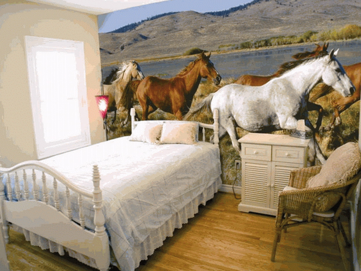 Kids Horse Wall Art