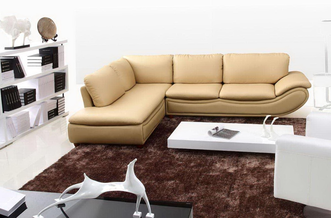 Leather Modern Sectional Sofa