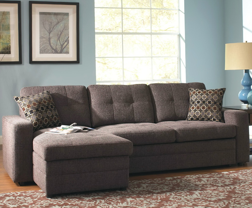Small Sleeper Sofa Sectional With Chaise