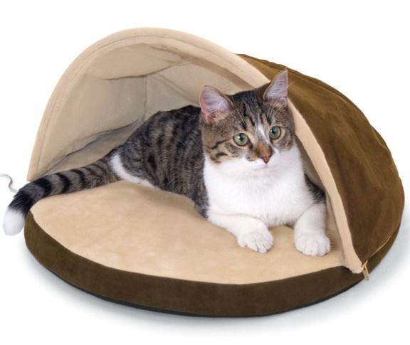 Heated Cat Bed Petsmart