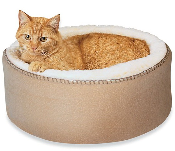 Heated Cat Bed Safety